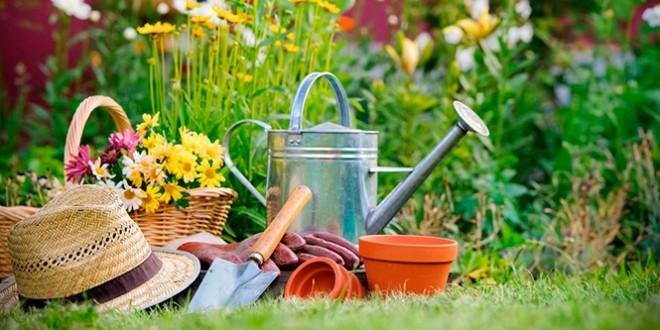 сценка поздравления женщине садоводу