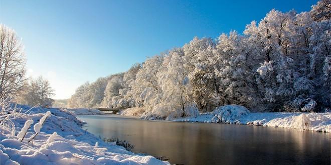 отдых на новый год 2016 в воронежской области