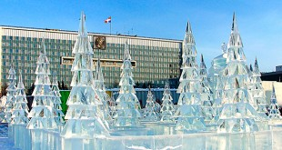 как встретить новый 2016 год в перми
