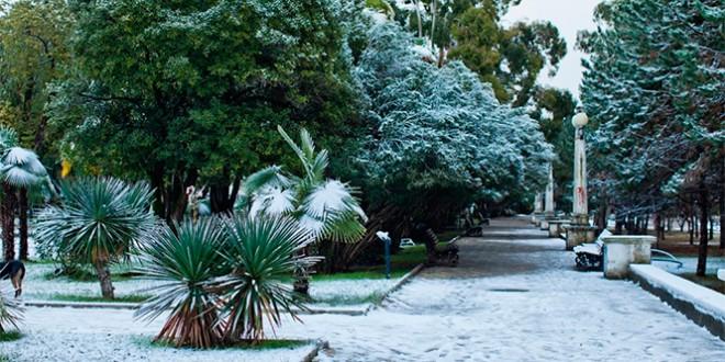 отдых в абхазии на новый год 2016