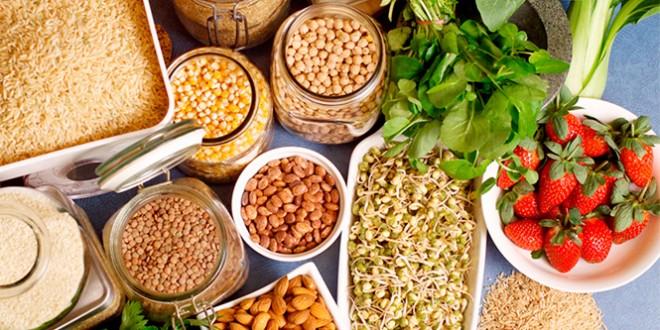 какие продукты относятся к правильному питанию