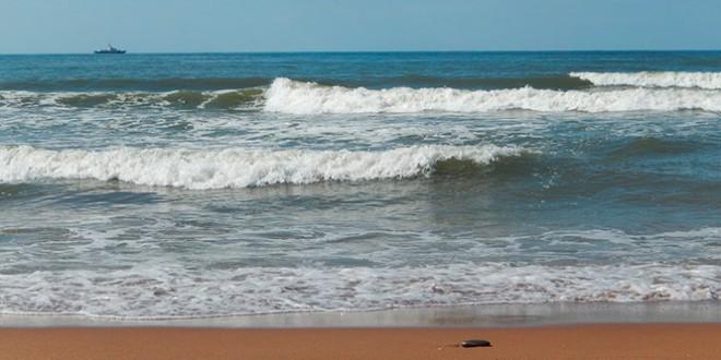 отдых в астрахани на каспийском море частный сектор