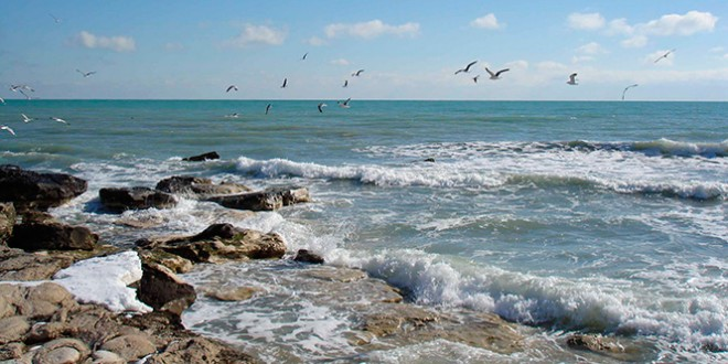отдых на берегу каспийского моря в россии