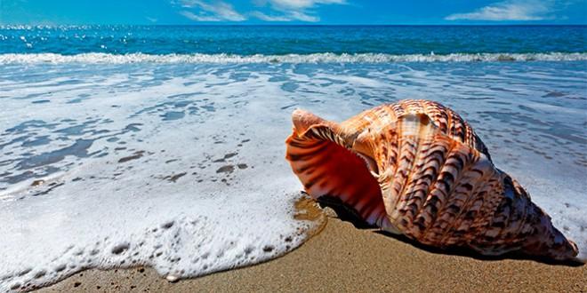 всемирный день моря стихи и поздравления