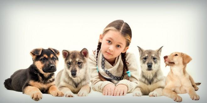классный час на тему всемирный день защиты животных